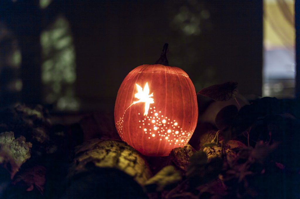 Enchanted Halloween Fairy Jack-o-lantern to inspire fall creativity